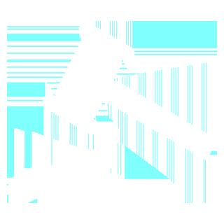 Statutory Consultancy